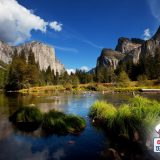 Nature in California