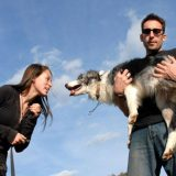 How Much Do You Know About Dog Owner Liability