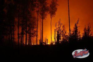 staying-safe-during-californias-wildfire-season