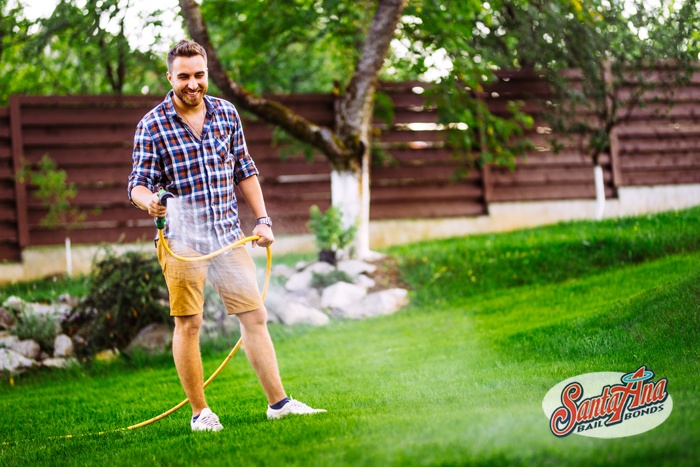 watering-your-california-lawn